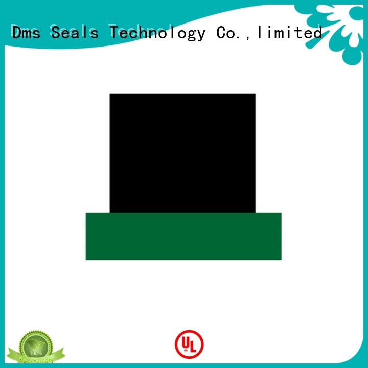 ptfe hydraulic rod rod seals DMS Seal Manufacturer Brand company