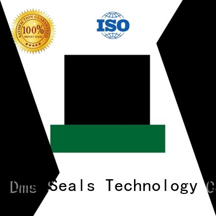 Hot seal hydraulic rod seals ptfe DMS Seal Manufacturer Brand
