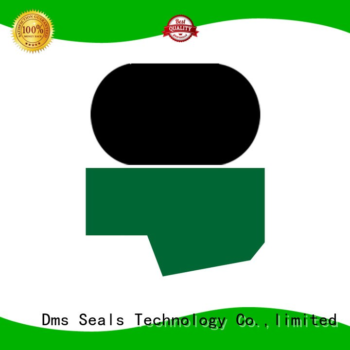 ptfe hydraulic DMS Seal Manufacturer Brand rod seals