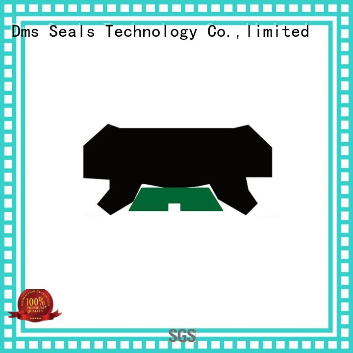 hydraulic ptfe DMS Seal Manufacturer Brand rod seals