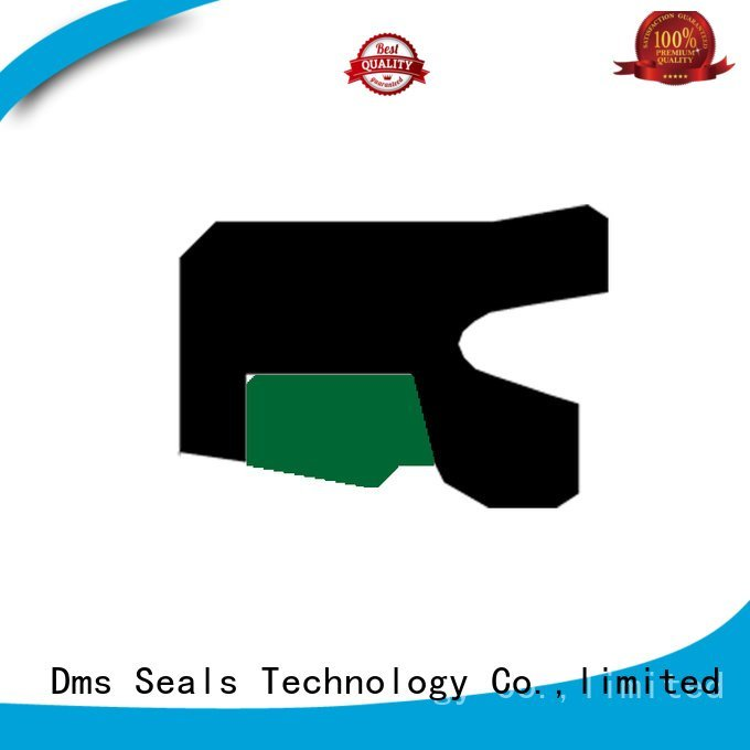 rod nbrfkm rod seals ptfe DMS Seal Manufacturer Brand