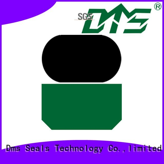 ptfe hydraulic rod seals nbrfkm DMS Seal Manufacturer