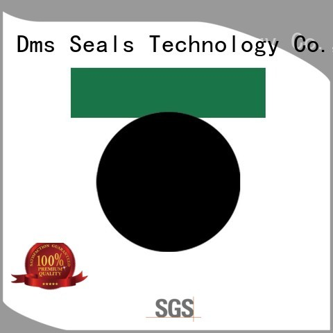 Hot piston pneumatic piston seals nbrfkm DMS Seal Manufacturer Brand