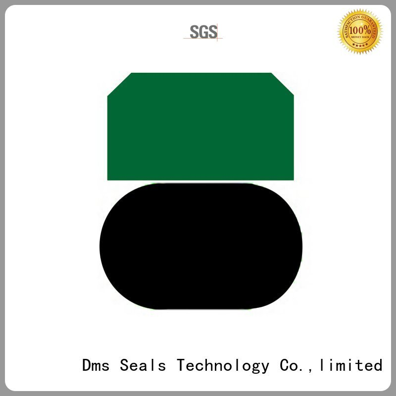 Quality DMS Seal Manufacturer Brand piston piston seals