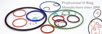 O Ring Manufacturer & Supplier