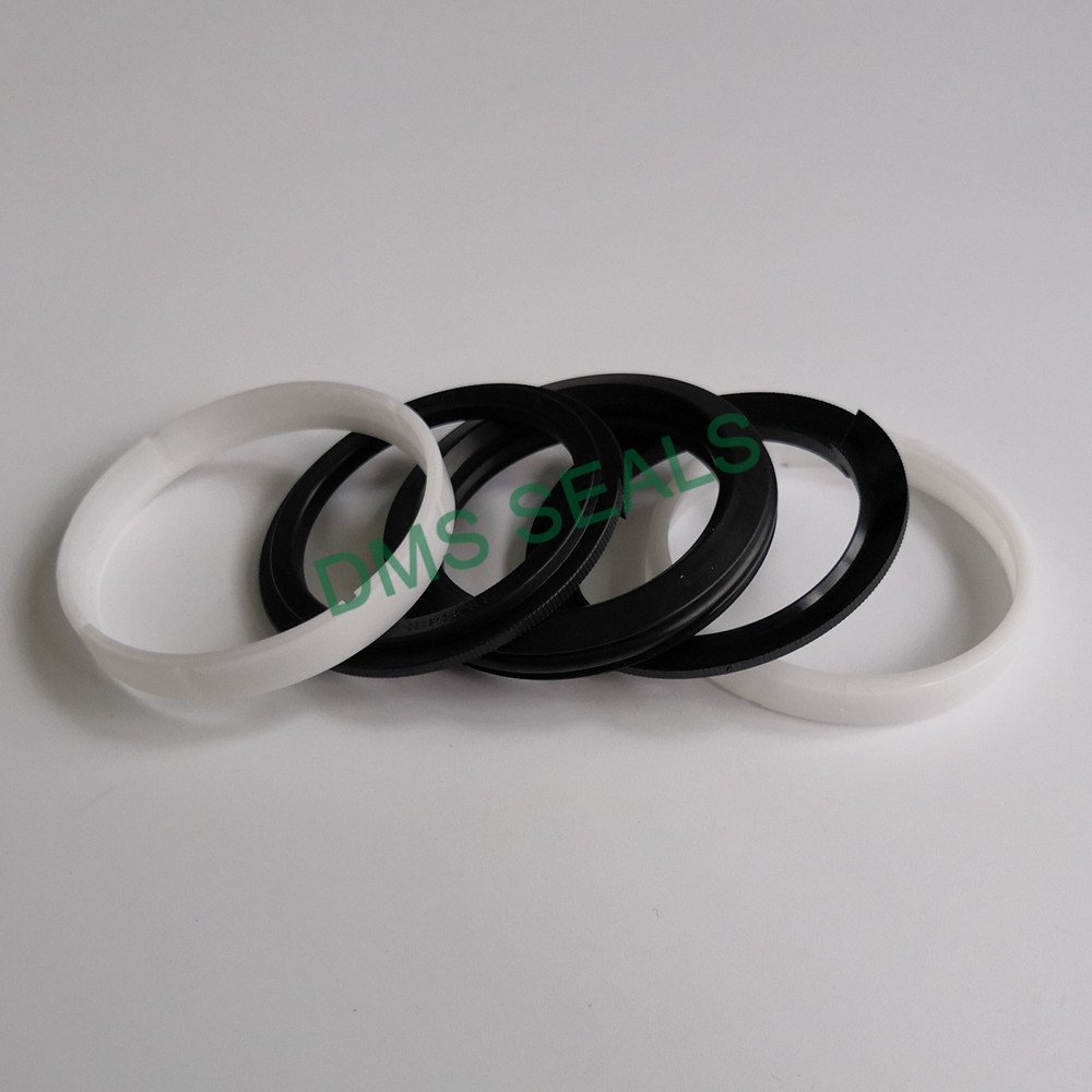DPM - PTFE Hydraulic Piston Seal with NBR/FKM O-Ring