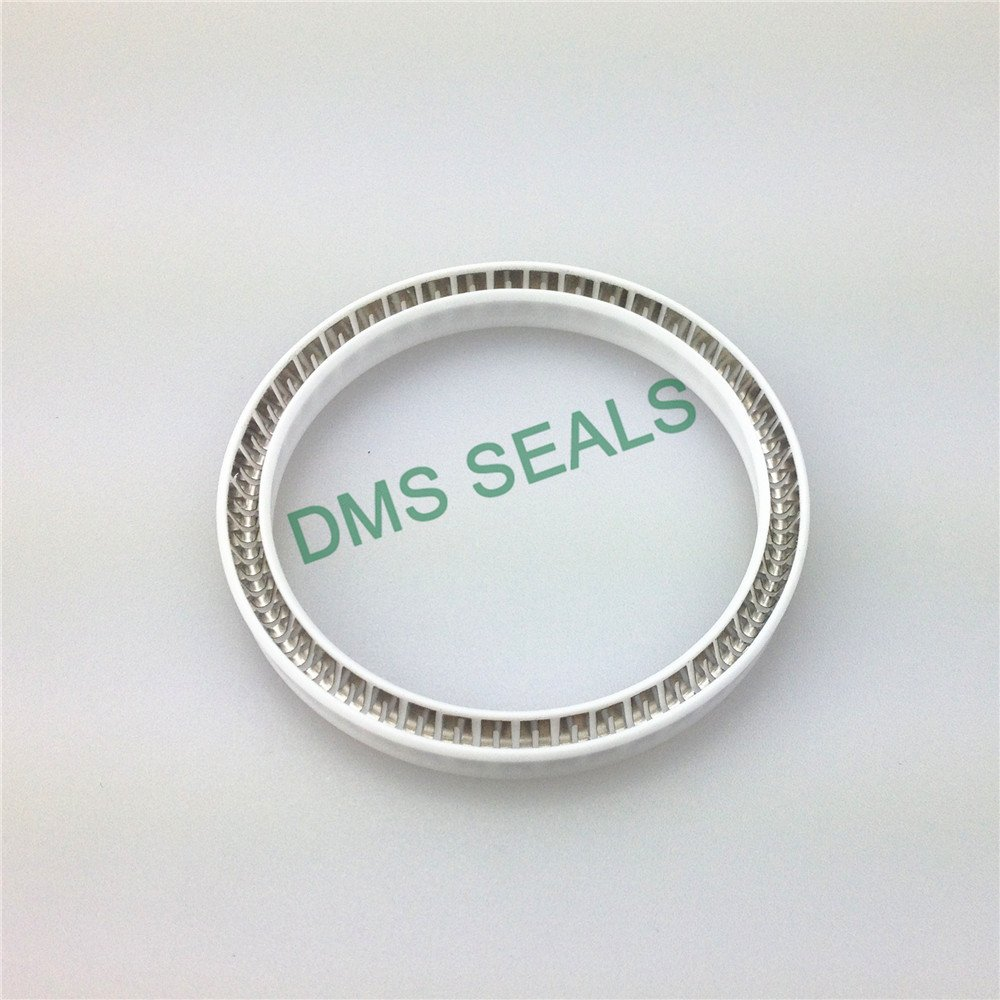 FSKR - PTFE Hydraulic Spring Seal with NBR/FKM O-Ring