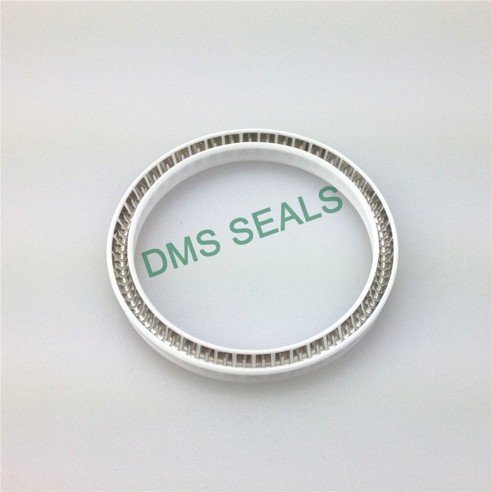 Virgin PTFE FDA food and medicine industry spring energized seal