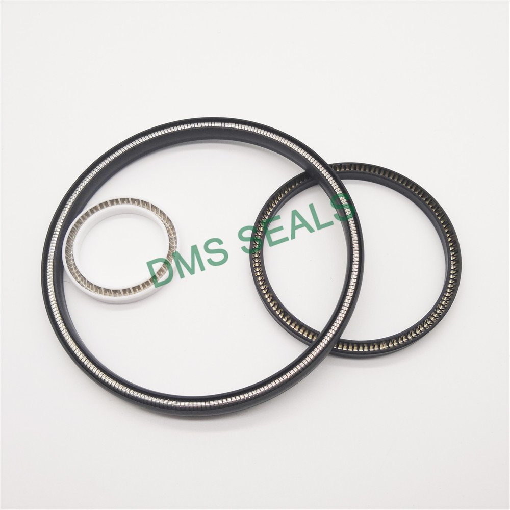 DMS Seal Manufacturer FSKR - PTFE Hydraulic Spring Seal with NBR/FKM O-Ring Spring Seals image1