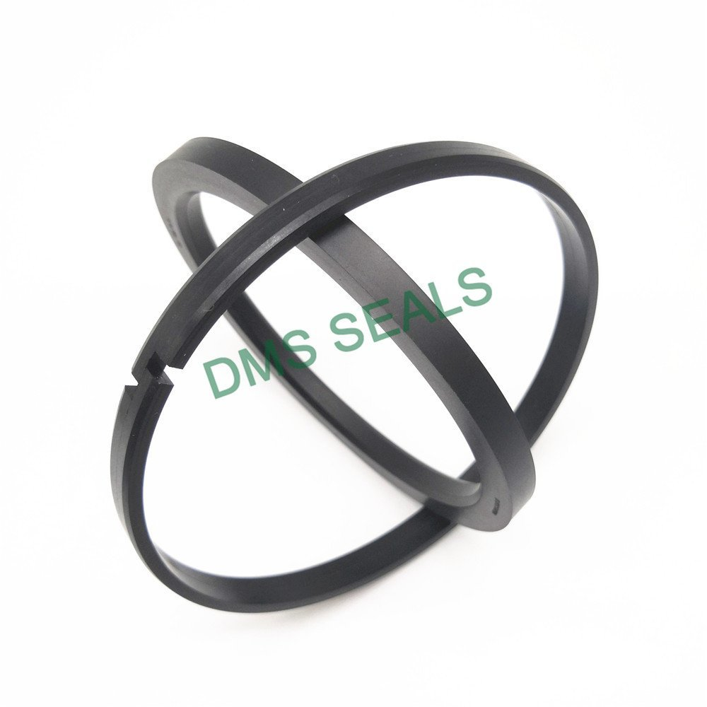 DMS Seal Manufacturer OK - PTFE Hydraulic Piston Seal with NBR/FKM O-Ring Piston Seals image1
