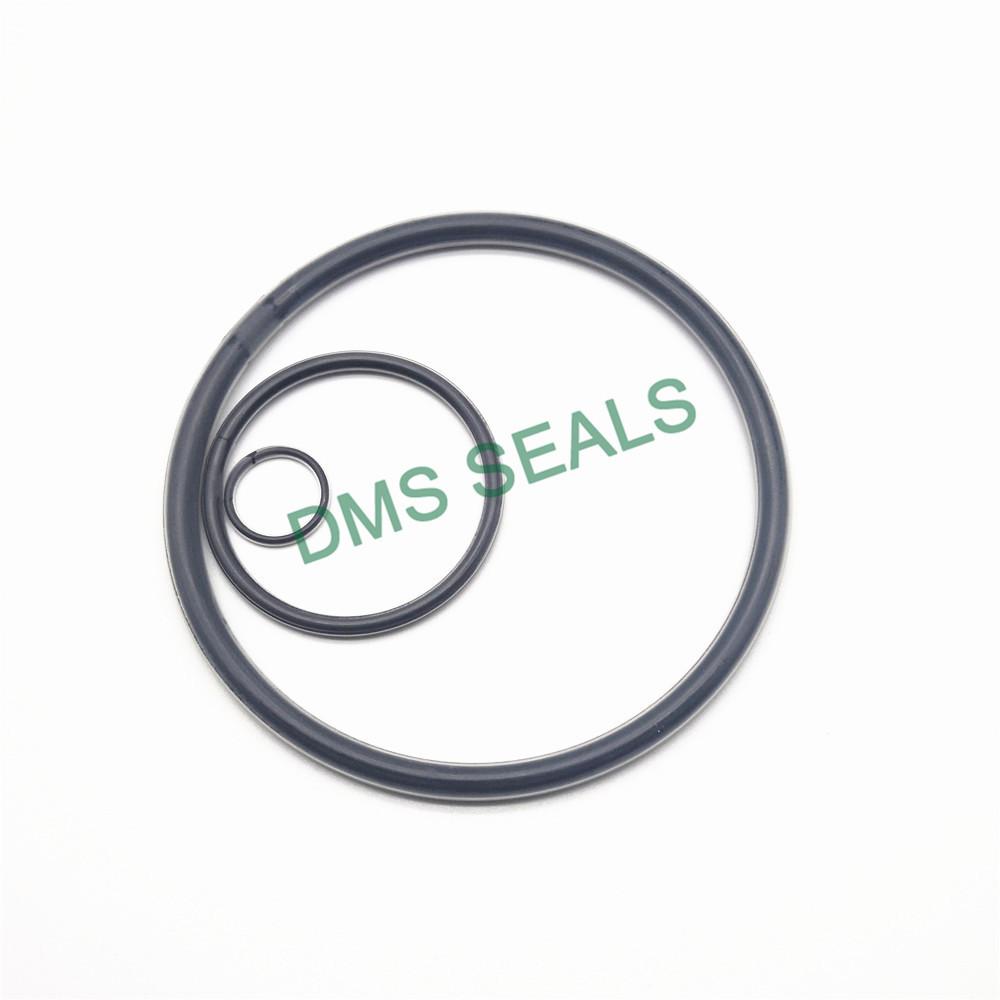 PTFE encapsulated viton O-Ring