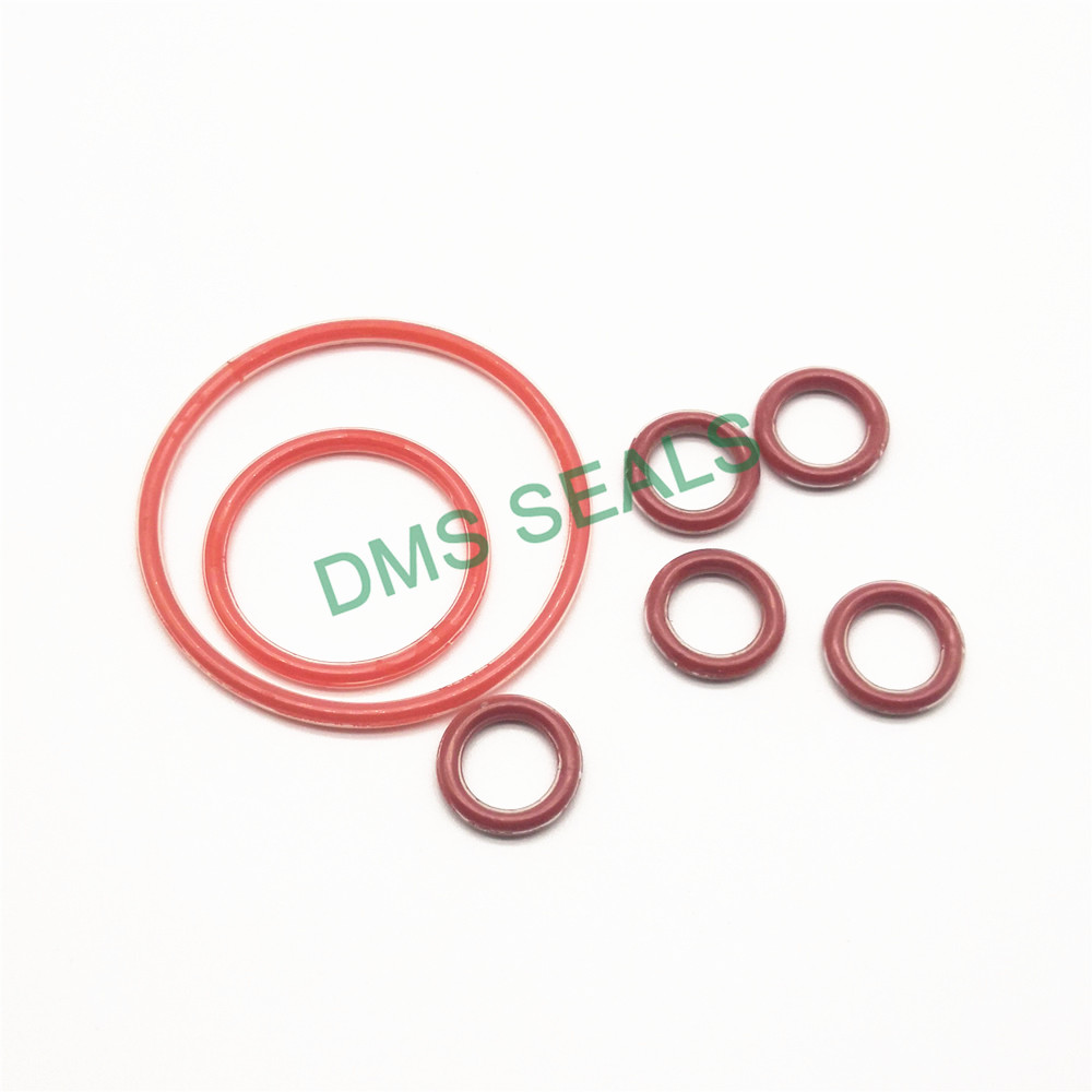 DMS Seal Manufacturer PTFE encapsulated silicone O-Rings O-RINGS image3