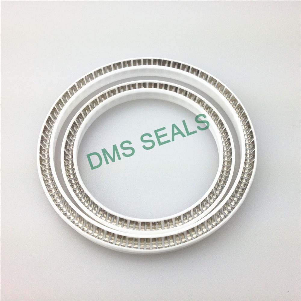 Virgin PTFE FDA food and medicine industry spring energized seal