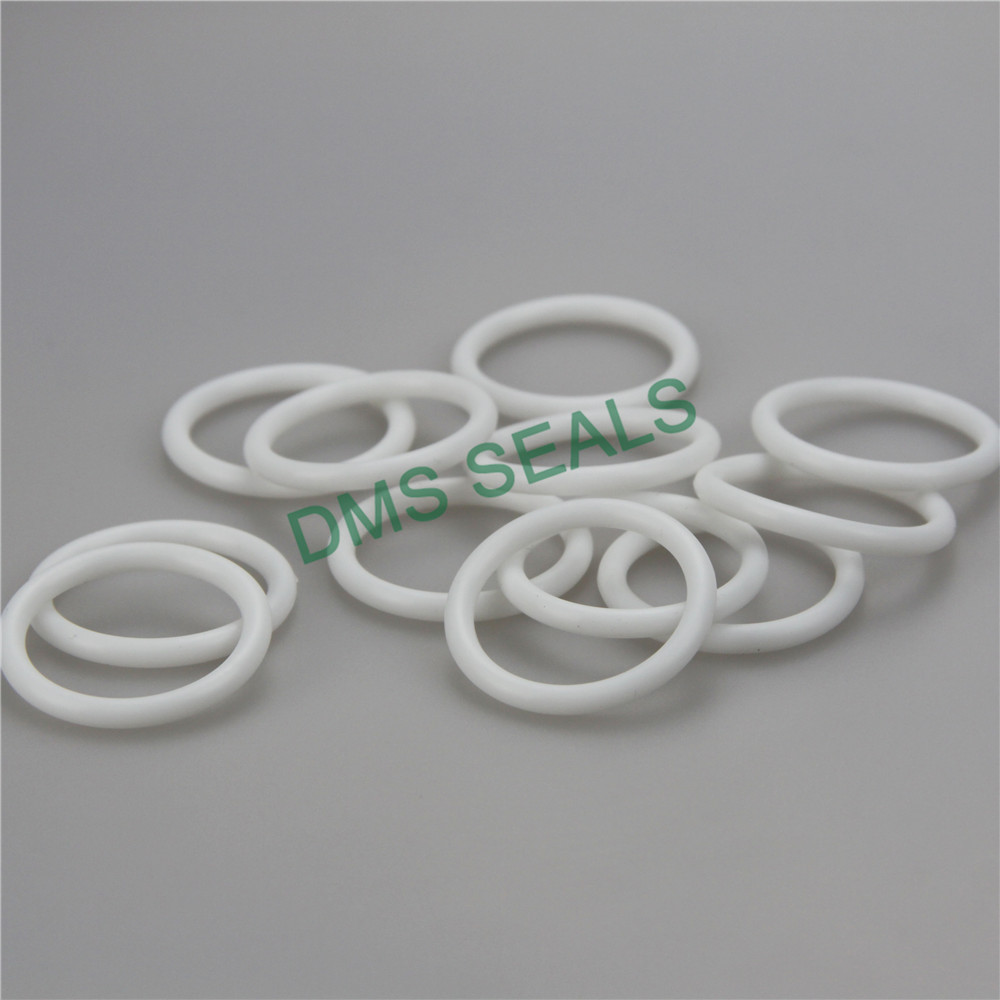 FFKM Kalrez O-Ring high temperature seal