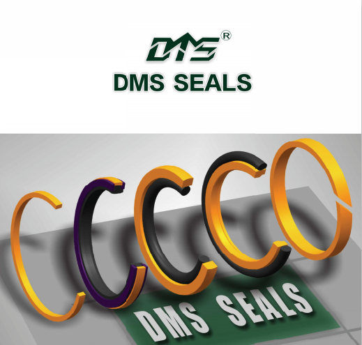 DMS SEAL company introduction