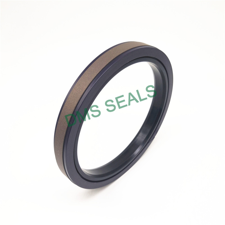 SPGW -  Hydraulic compact and combined Piston Seal with PTFE NBR and POM