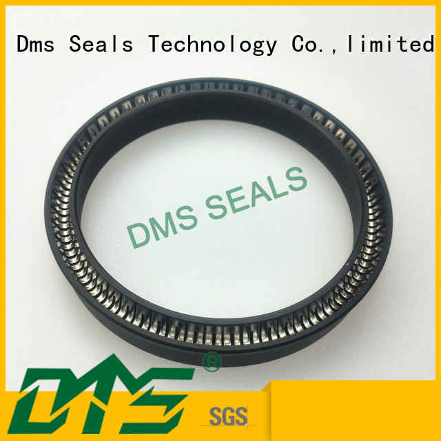 oring spring hydraulic spring energized seals ptfe DMS Seal Manufacturer Brand