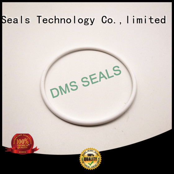 Quality DMS Seal Manufacturer Brand ptfe o-ring seal