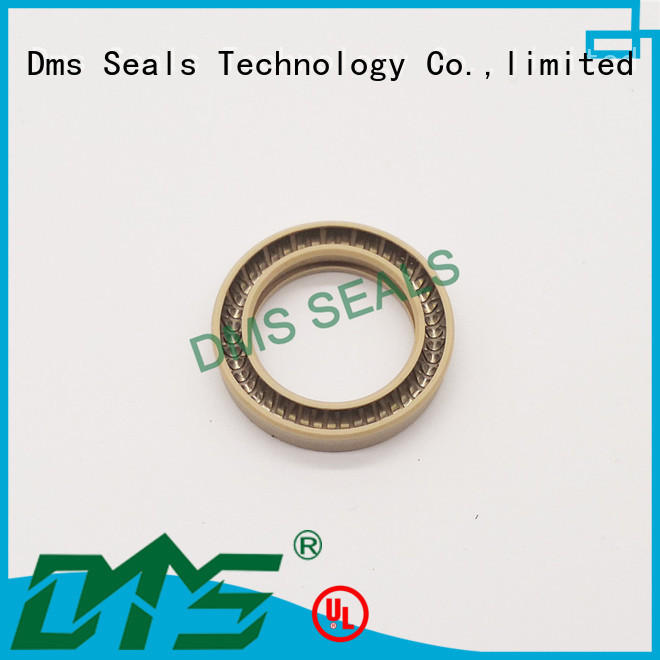 Wholesale seal spring energized seals DMS Seal Manufacturer Brand