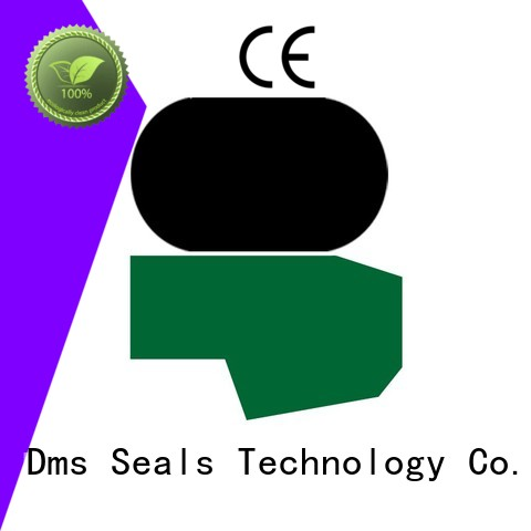DMS Seal Manufacturer Brand ptfe rod oring custom hydraulic rod seals