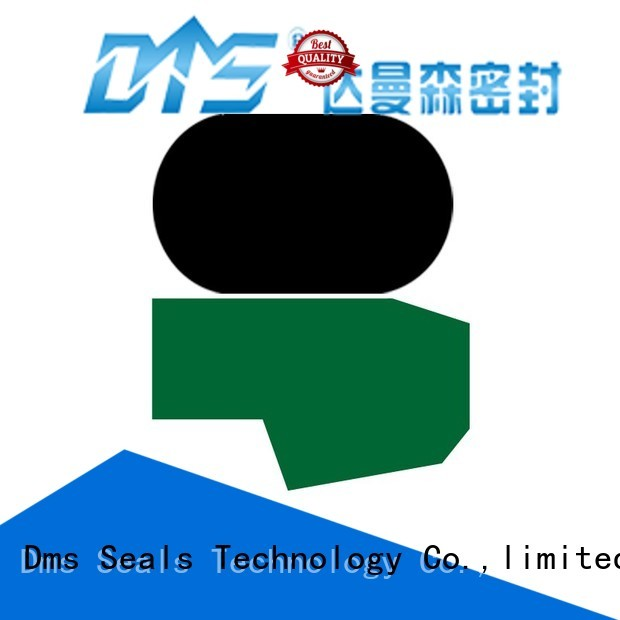 seal oring hydraulic rod seals DMS Seal Manufacturer manufacture