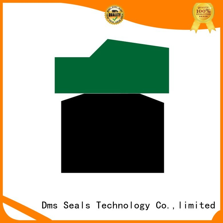 DMS Seal Manufacturer Brand seal nbrfkm ptfe pneumatic piston seals oring
