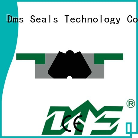 Hot pneumatic piston seals ptfe DMS Seal Manufacturer Brand