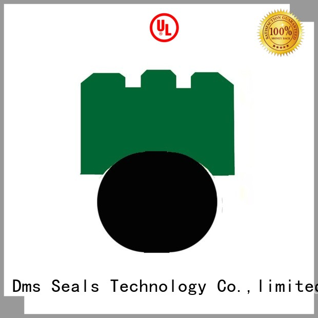 Wholesale rotary rotary shaft seals DMS Seal Manufacturer Brand